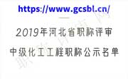 河北省职称评审,化工工程职称公示,化工职称公示名单