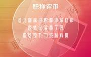 河北副高级职称评审材料,副高级职称评审材料,职称评审材料