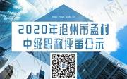 中级职称评审公示,职称评审公示,沧州市职称评审公示